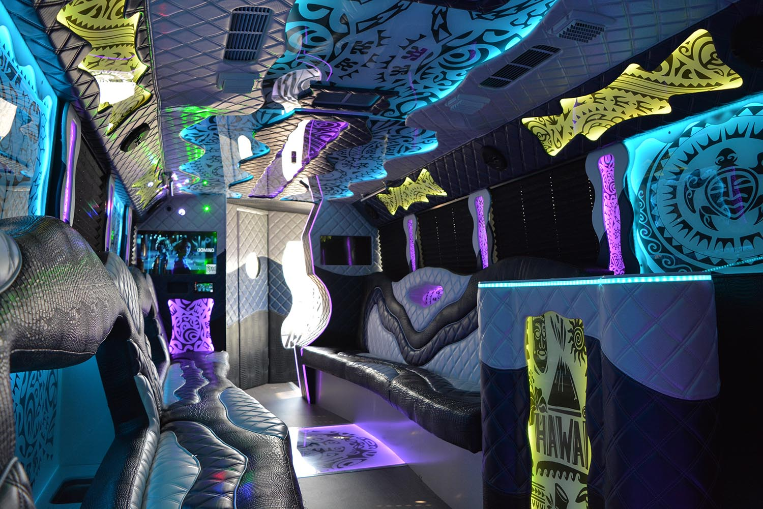 AVITAL CHICAGO PARTY BUS AND LIMOUSINE